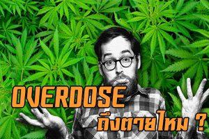 Overdose คือ