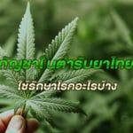 กัญชาในตำรับยาไทย ใช้รักษาโรคอะไรบ้าง?